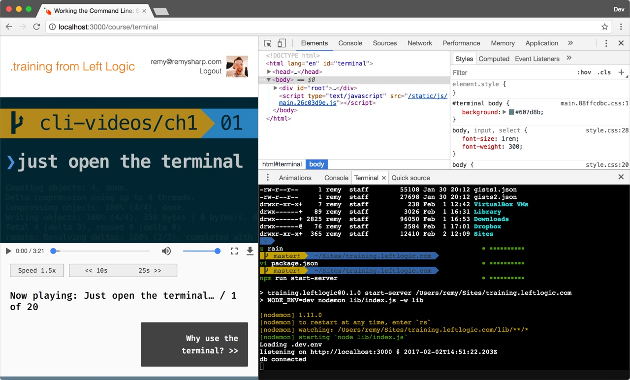 Terminal in the browser